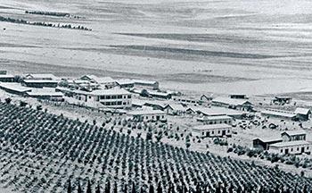 שדות עמק יזרעאל - בית אלפא (1930)